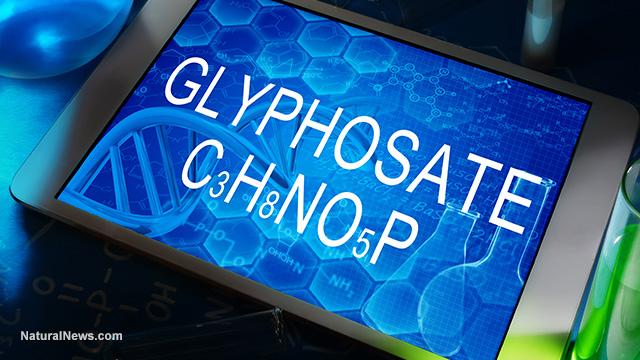 Glyphosate report