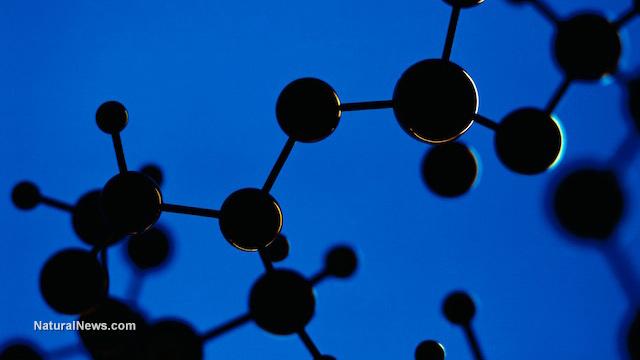 Основные аминокислоты и их важная роль в вашем здоровье