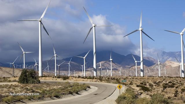 Wind farm operators