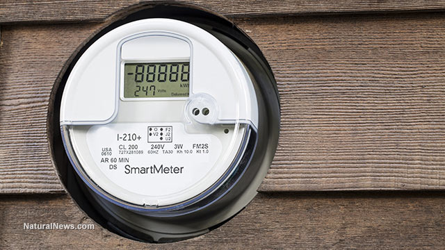 photo of Smart Meters mandated by government spontaneously exploding, setting off fires in private homes image