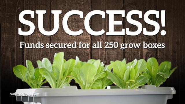 Food Rising Mini-Farm Grow Box