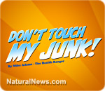Don't Touch My Junk song