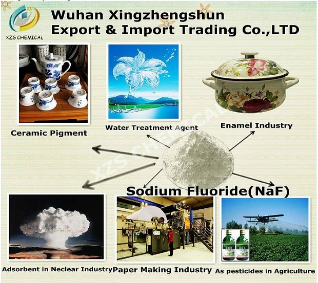 PROOF: Chinese industrial fluoride suppliers openly list sodium fluoride as insecticide Fluoride Pesticides Nuclear