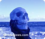 Prehistoric skulls