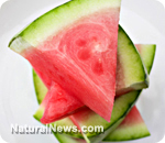 Watermelon extract