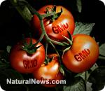 GMO-free diet