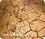 Drought conditions