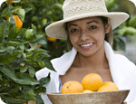 Citrus crops