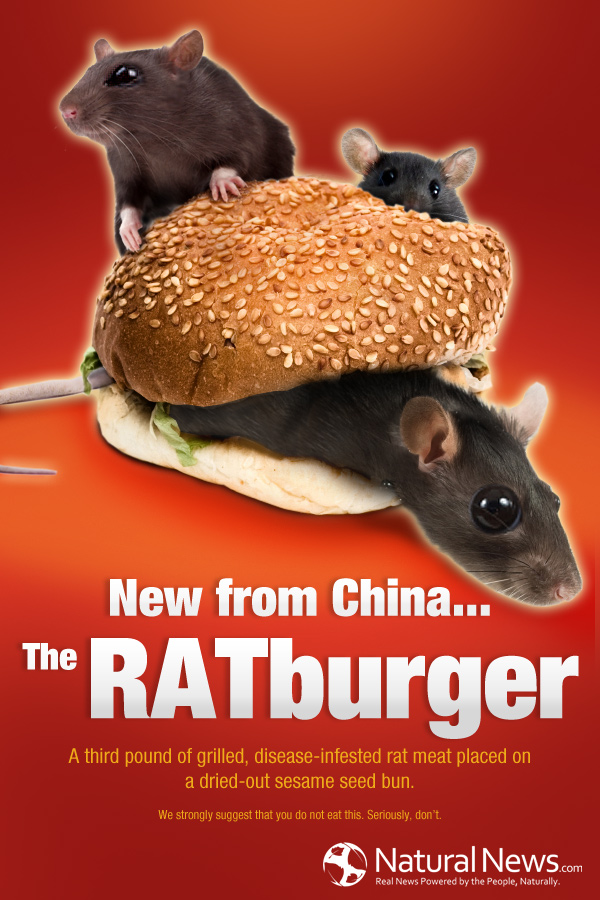 Introducing the Ratburger, the newest affordable cuisine from China! The RATburger 600