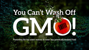 You Can't Wash Off GMO