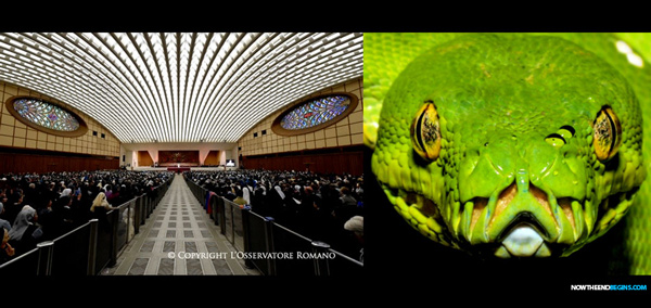 audience-building-reptile-snake-catholic-church-600.jpg