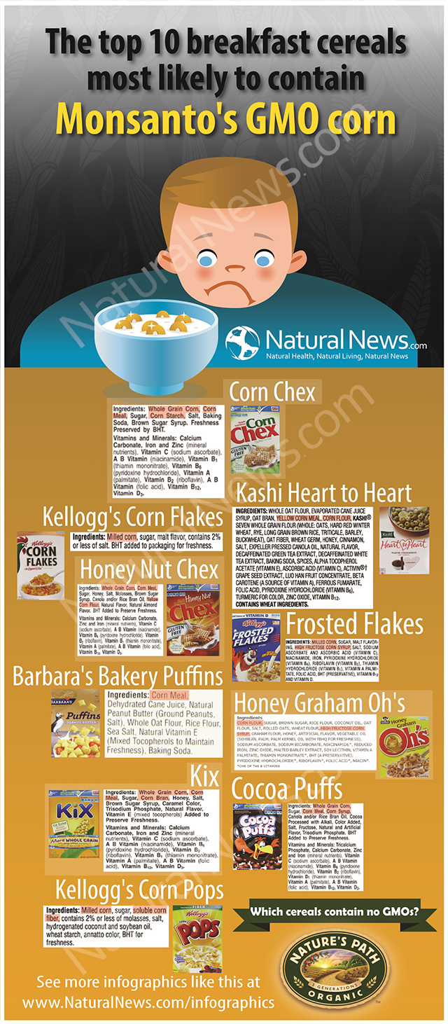 Top 10 breakfast cereals most likely to contain Monsanto's GMO corn