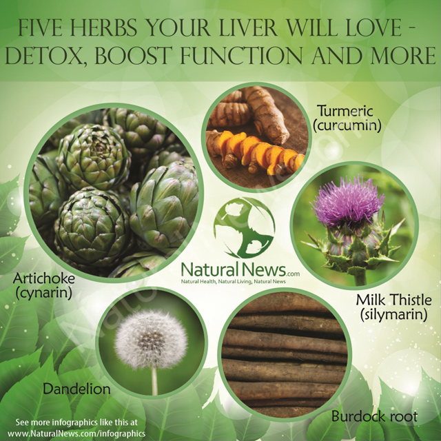 Five Herbs Your Liver Will Love