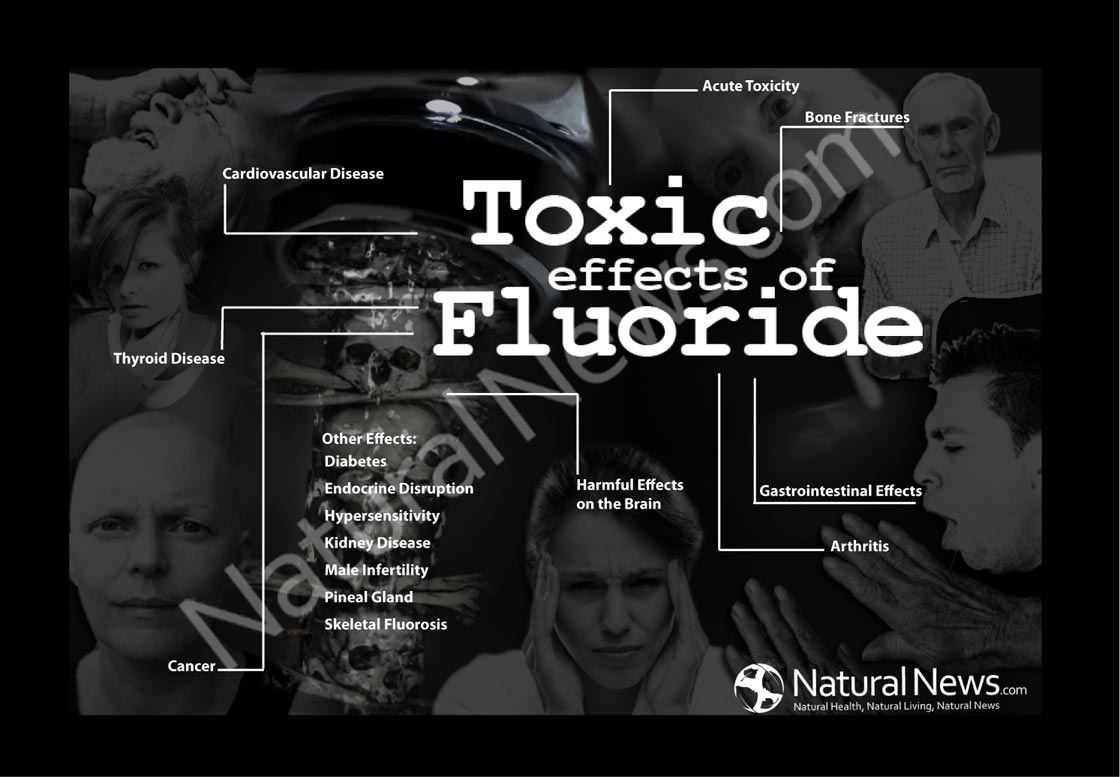 The Toxic Effects of Fluoride