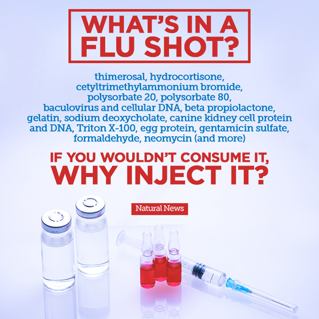 What's in a Flu Shot?