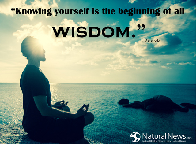 "Knowing yourself is the beginning of all wisdom."" - Aristotle"