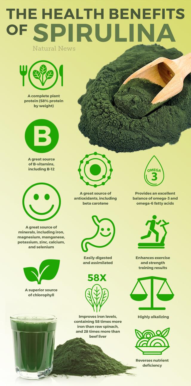 Les bienfaits de la spiruline et de la nutrition stimulent la santé en 10 ...