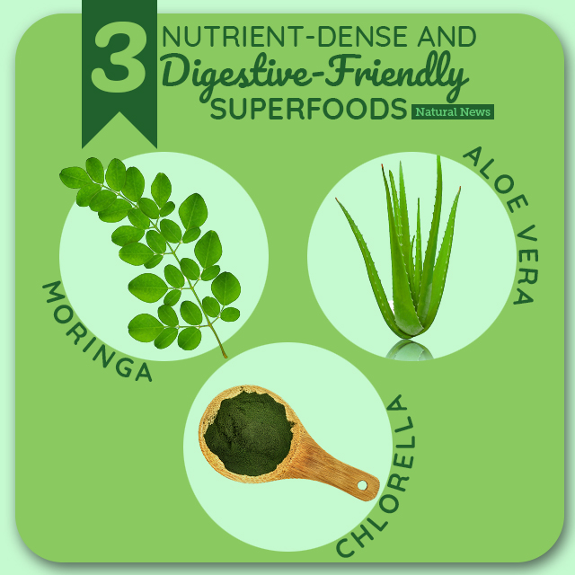 Three Nutrient Dense Superfoods That Are Easy On Your