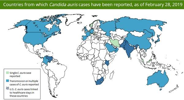 [Imagem: Candida-Auris-CDC-nations.jpg]