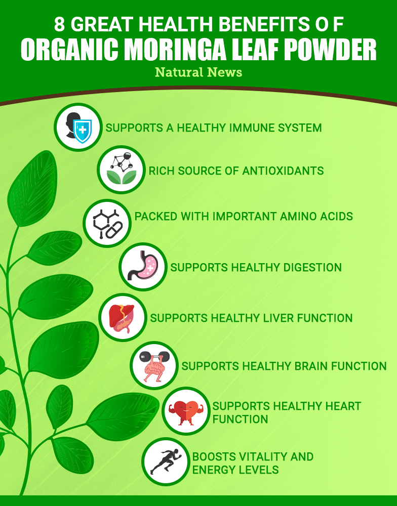 Add organic MORINGA leaf powder to your daily routine to promote