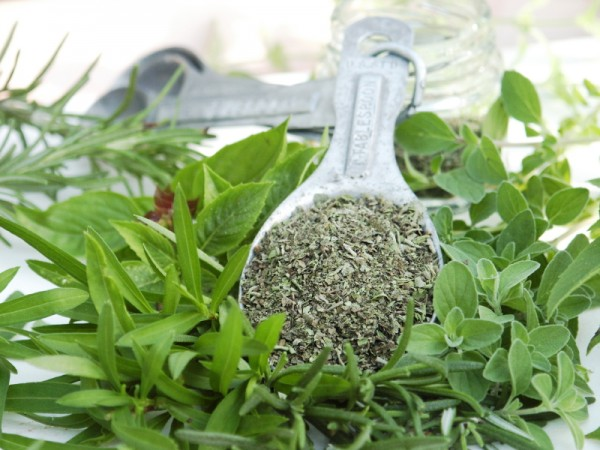 Image: Oregano oil inhibits cancer growth, removes warts and more