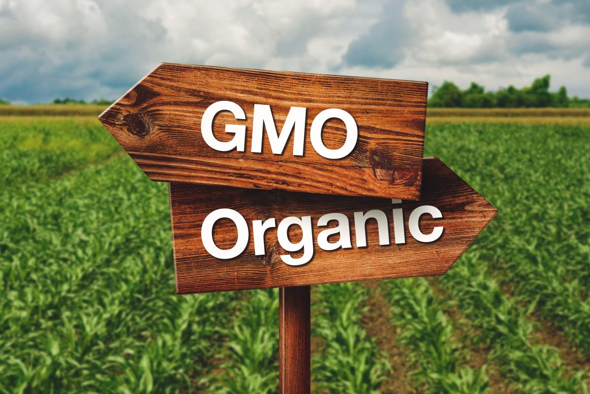 Image: Indian state will pay farmers to go 100% organic and GMO-free