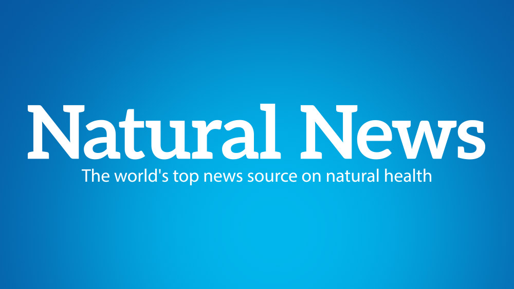 Image: Natural News launches standalone blog site to insulate natural health bloggers from punitive Google censorship