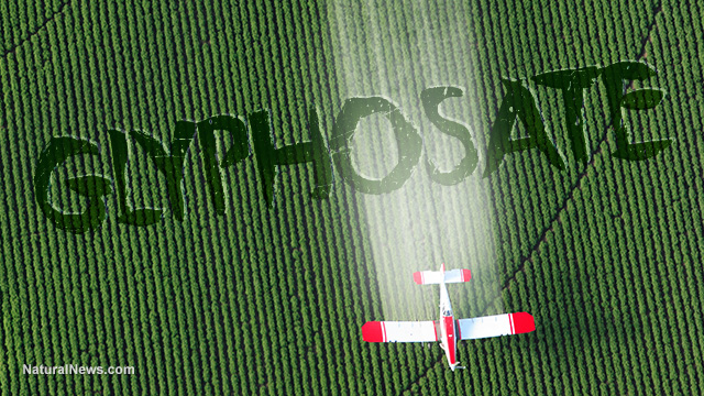 "Image: Coincidence? Monsanto patented glyphosate as an ""antibiotic"" drug, claiming weed killer is medicine"