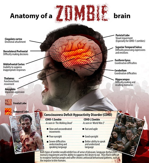 Image: Scientists reveal a zombie outbreak could wipe out humanity in 100 days: Here's how to survive if it happens