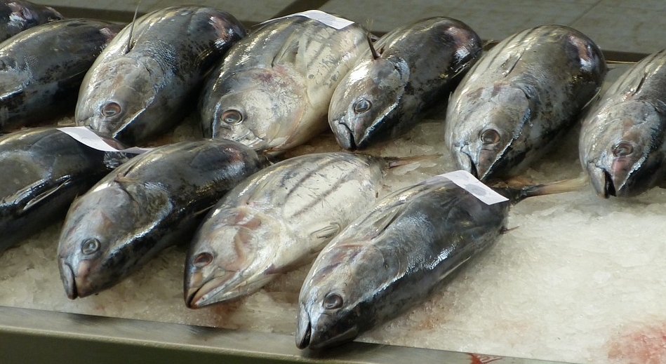 Image: Contaminated seafood from China is flooding the United States, are you safe?