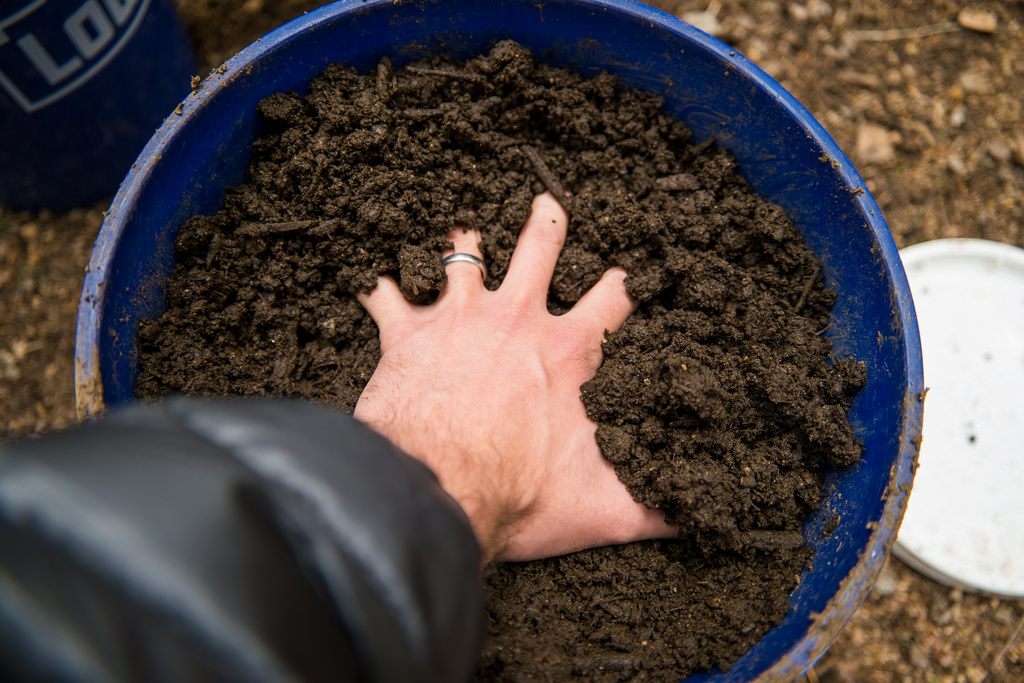 Image: 8 ways to make healthy organic soil for your garden