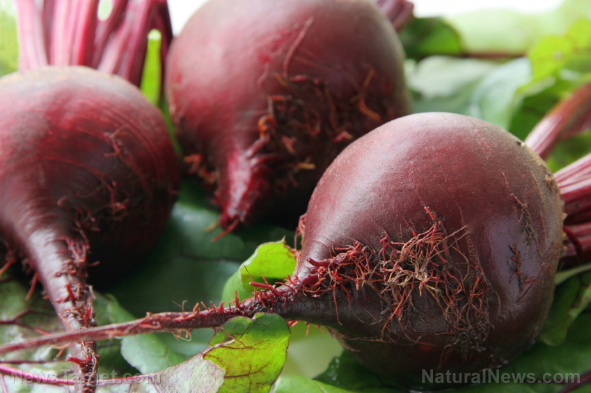 Image: How to harvest an endless supply of beets from your back yard