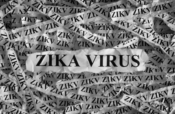 Image: Zika virus vaccine will genetically re-engineer your DNA