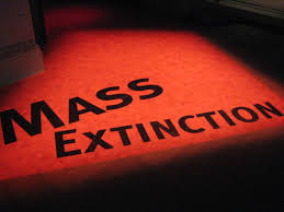 Image: Mass die-offs accelerate across the planet, by 2020 two-thirds of wild animals will be wiped out