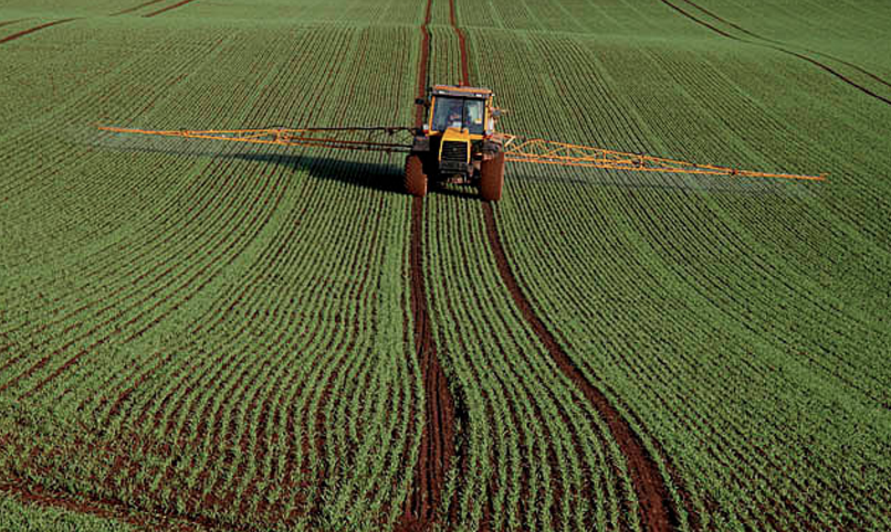 Image: Vast quantities of crops dumped with cancer-causing glyphosate right before harvest