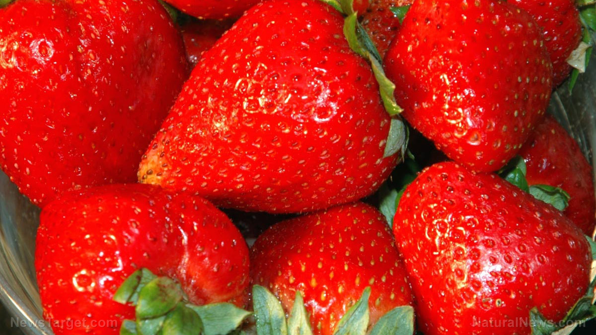 Image: Researchers discover that strawberries can inhibit breast cancer in mice