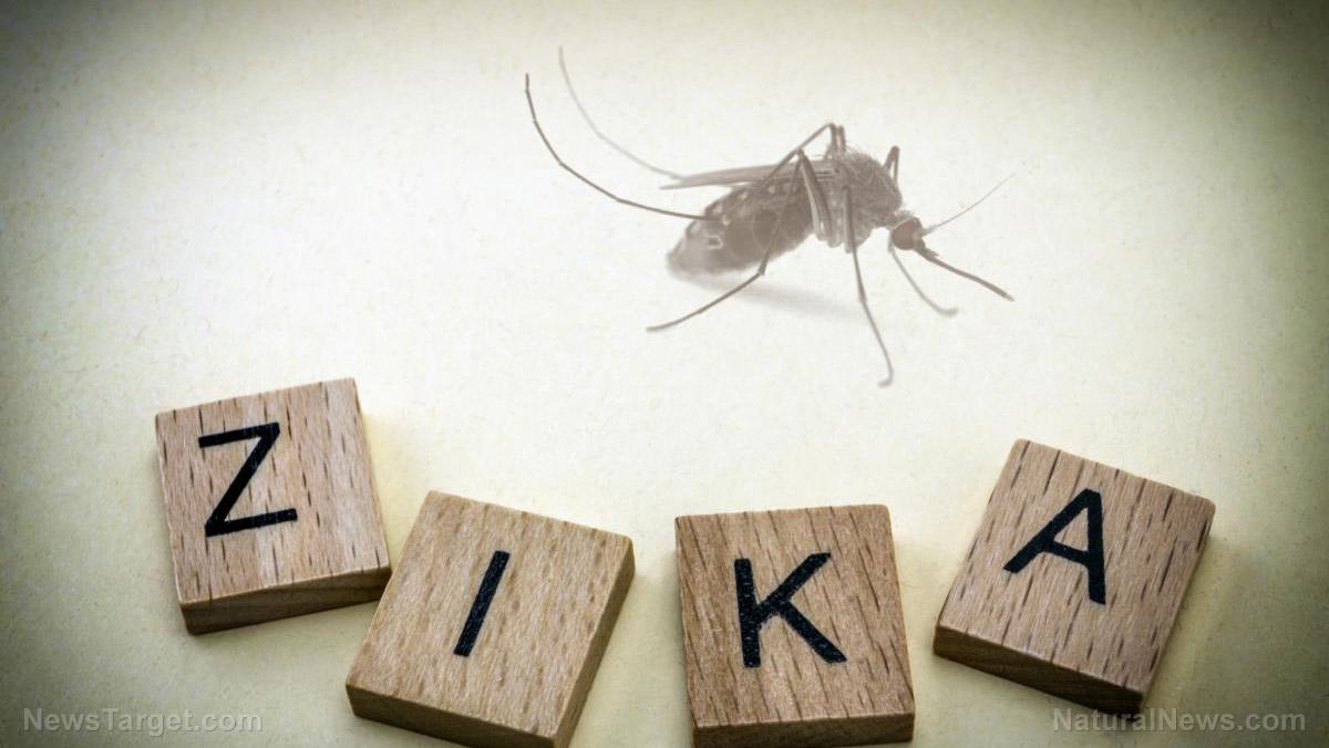Mosquito-Zika-Virus.jpg