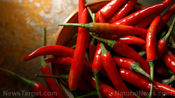 Image: Birds help produce rare wild chili peppers through symbiotic relationships