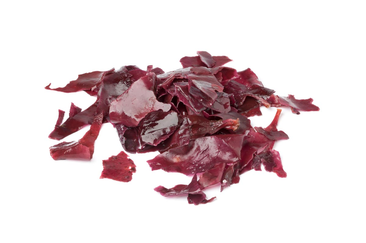 Image: Red Seaweed: the radiation protection superfood you're not getting enough of