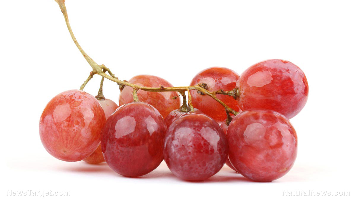 Image: Resveratrol compound in grapes found to kill cancer stem cells