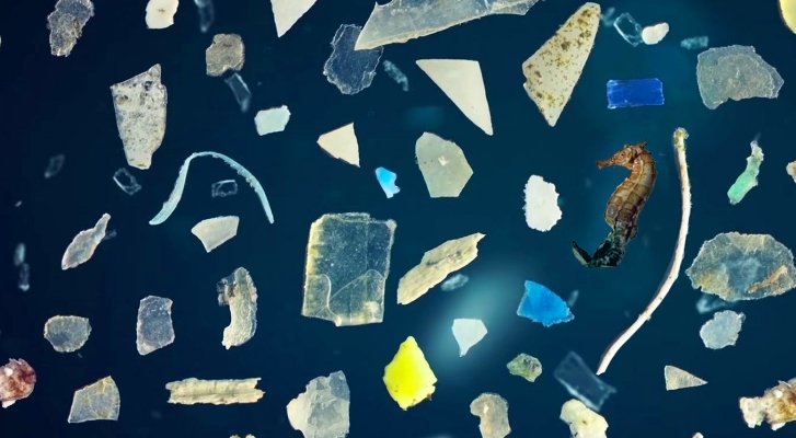 Image: Microplastic pollution is the REAL threat to our oceans, warn scientists