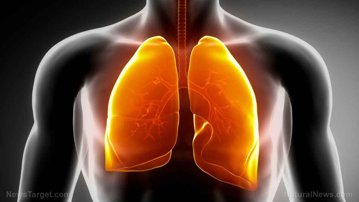 Image: 10 Ways to DETOXIFY your dirty lungs