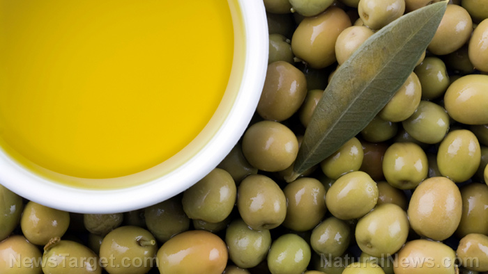 Image: Academics and nutritionists confirm olive oil is essential for good health