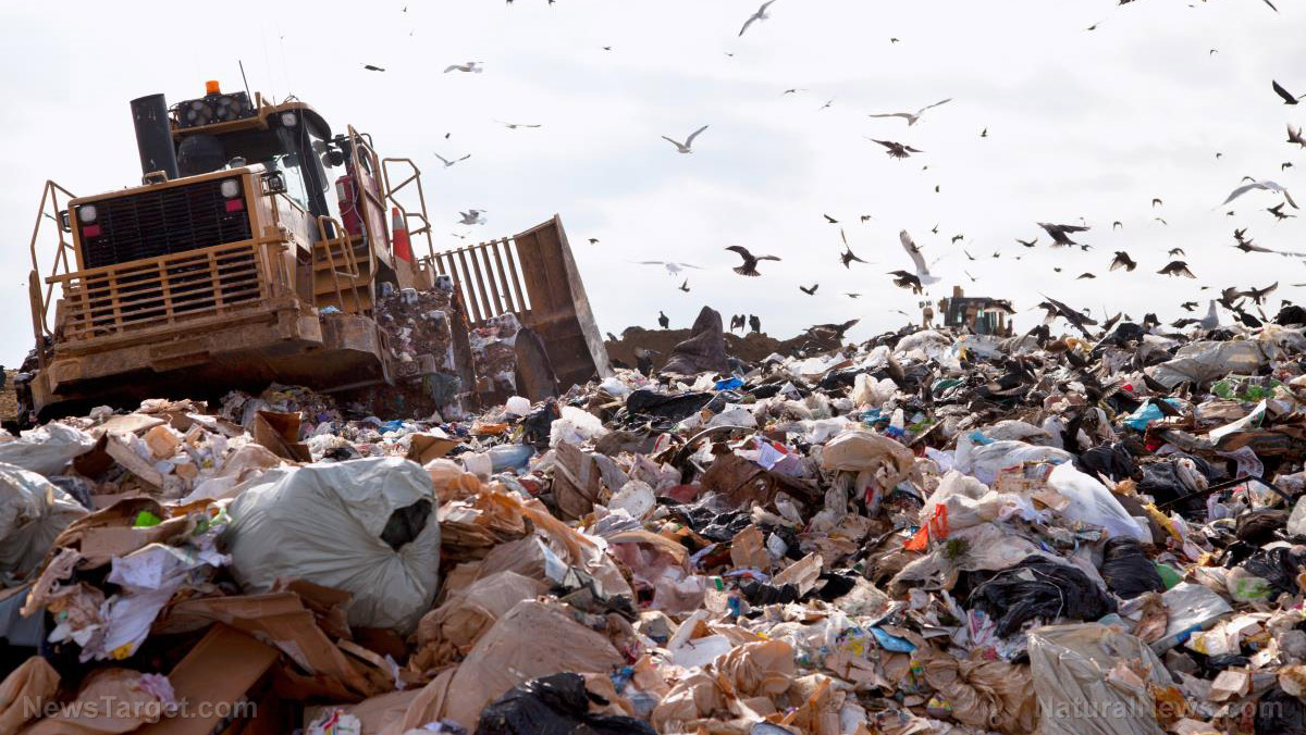 Image: Almost 40 percent of U.S. food production goes to waste… here's how we can do better