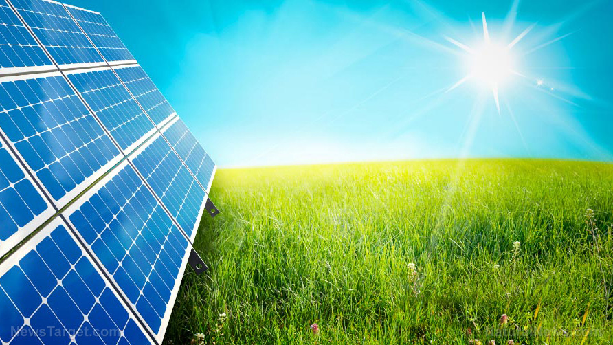 Image: Solar panel manufacturing devastates the environment with toxic heavy metals, warns report