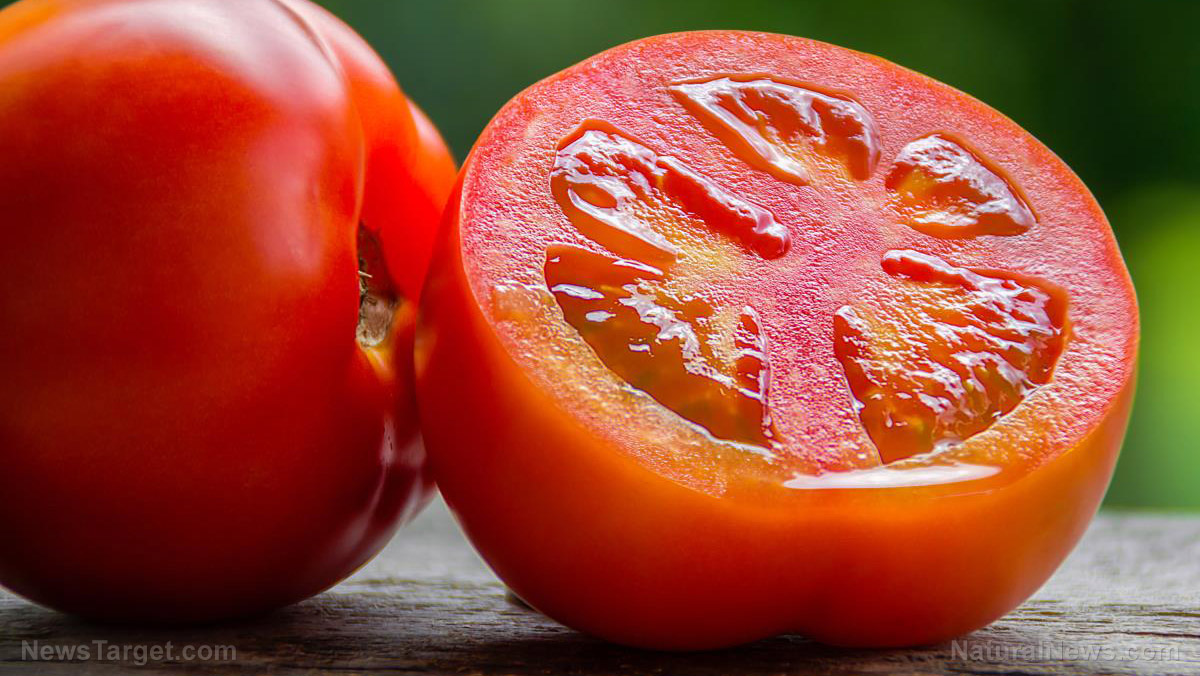 Want to prevent skin cancer? Eat more tomatoes … new science confirms powerful anti-cancer effect Tomato-Fresh-Garden