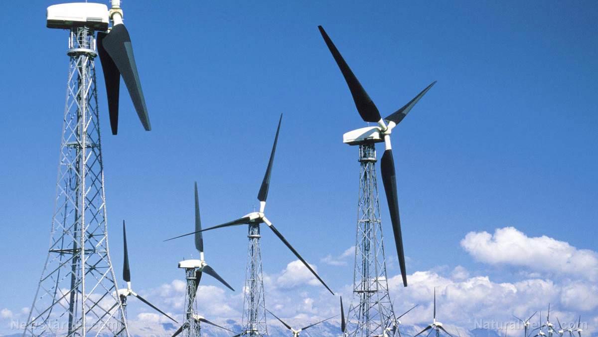 Scientists Review The Downside Of Renewable Energies