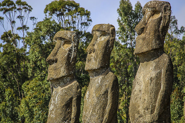 Easter Island ancient people didn t die off from destroying their ecosystem, new study confirms