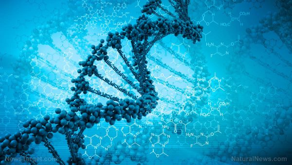 Scientists admit they really have no idea what 75% of human genetic code is actually used for