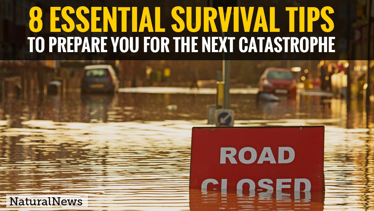 Image: You need to know these 8 essential survival tips to prepare you for the next catastrophe